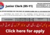 Sindh Police Junior Clerk Karachi Jobs 2020
