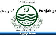 District and Session Court Jobs In Sialkot 2020