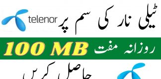 Telenor Questions answer