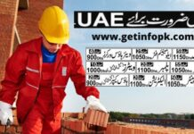 Urgent staff required in Dubai UAE Jobs 2020