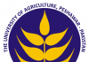 University of Agriculture Peshawar AUP Jobs