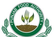 Punjab food authority jobs 2021 Lahore